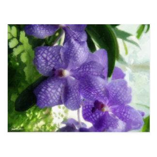 Orquídeas azules Painterly Postales