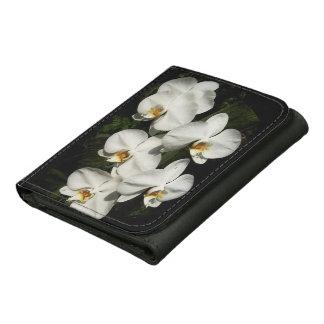 Orquídeas blancas del phalaenopsis