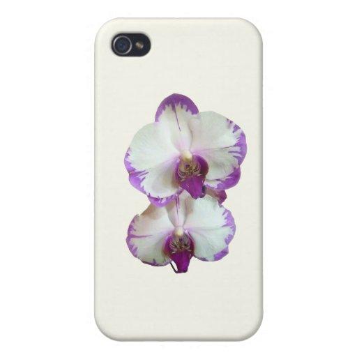 Orquídeas blancas del Phalaenopsis con los bordes  iPhone 4 Funda