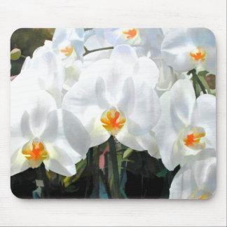 Orquídeas blancas del Phalaenopsis que brillan int Mousepads