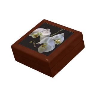 Orquídeas blancas elegantes en negro caja de recuerdo