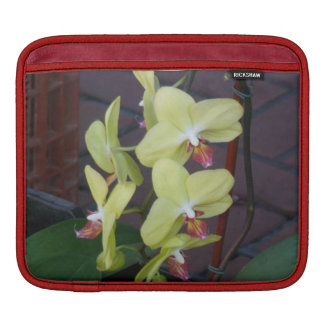 Orquídeas blancas funda para iPads