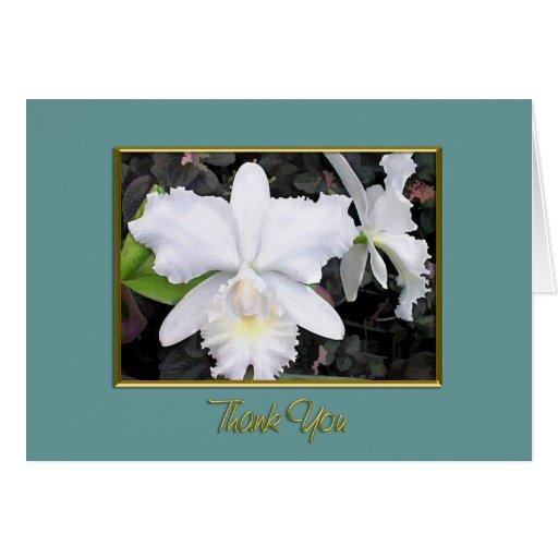 Orquídeas blancas quebradizas en gracias sombrías  tarjetas