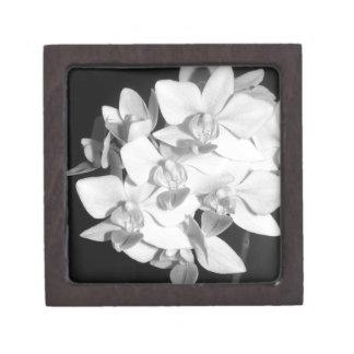 Orquídeas blancos y negros caja de joyas de calidad
