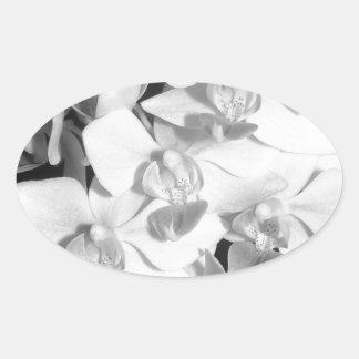 Orquídeas blancos y negros pegatina ovalada