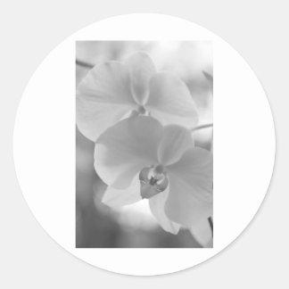 Orquídeas blancos y negros pegatina redonda