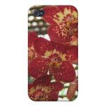 Orquídeas - caso del iPhone iPhone 4/4S Funda