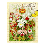 Orquídeas coloridas y mariposa amarilla