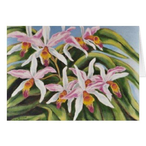 """Orquídeas de Catalaya "" Tarjeta"