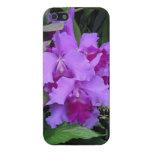 Orquídeas de Catleya de la lavanda iPhone 5 Coberturas