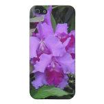Orquídeas de Catleya de la lavanda iPhone 5 Fundas