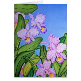 Orquídeas de Cattleya Tarjeta De Felicitación