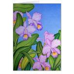 Orquídeas de Cattleya Tarjetas
