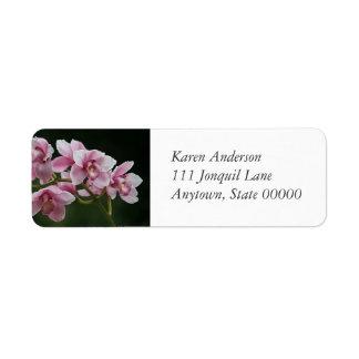 Orquídeas de color rosa oscuro etiquetas de remite