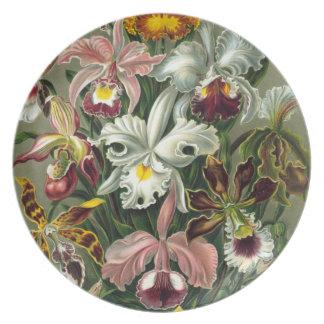 Orquídeas de Haeckel Platos