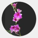 orquídeas de las rosas fuertes pegatina redonda