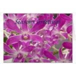 Orquídeas de los saludos de las estaciones felicitacion