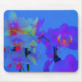 orquídeas de neón mouse pads
