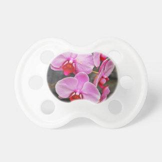 Orquídeas de polilla rosadas hermosas chupetes para bebes