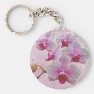Orquídeas de polilla rosadas - Phalaenopsis Llavero Redondo Tipo Pin