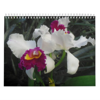 Orquídeas de Scott S. Jones Calendarios De Pared