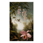 Orquídeas del aerosol con el poster del colibrí