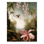 Orquídeas del aerosol con la postal del colibrí