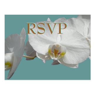 Orquídeas del blanco de RSVP del boda Postales