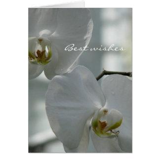 Orquídeas del blanco del ~ de la invitación de bod tarjetas
