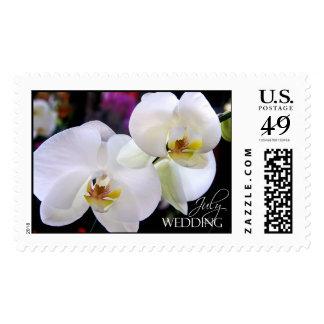 Orquídeas del boda de julio que casan franqueo