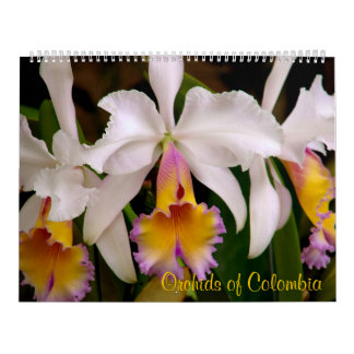 Orquídeas del calendario 2013 de Colombia