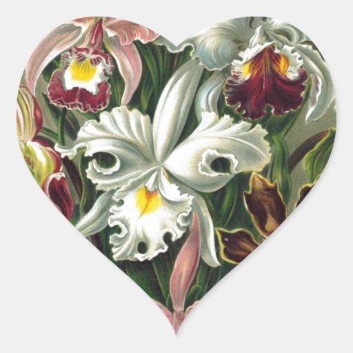 Orquídeas del vintage calcomanía corazón