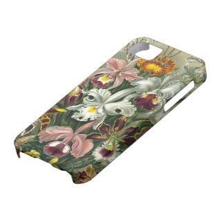 Orquídeas del vintage iPhone 5 carcasa