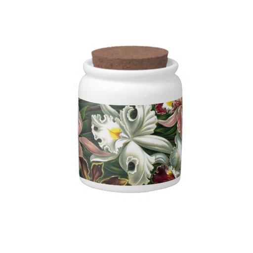 Orquídeas del vintage jarras para caramelos
