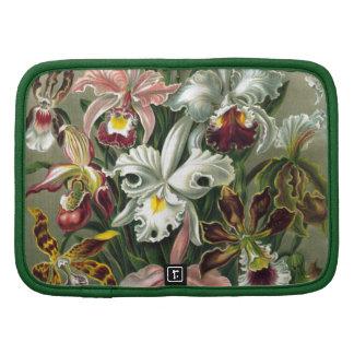 Orquídeas del vintage planificador