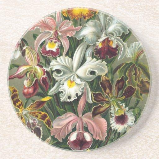 Orquídeas del vintage posavasos personalizados