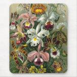Orquídeas del vintage tapetes de ratón