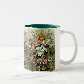 Orquídeas del vintage taza de café