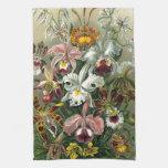 Orquídeas del vintage toalla