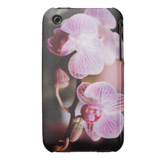 Orquídeas Diane de la caja 2 de la casamata iPhone 3 Case-Mate Carcasas