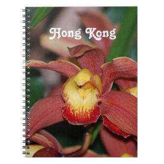Orquídeas en Hong Kong