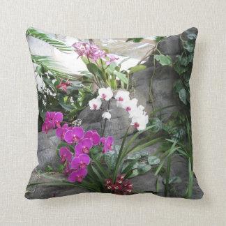 Orquídeas en la almohada de DBG