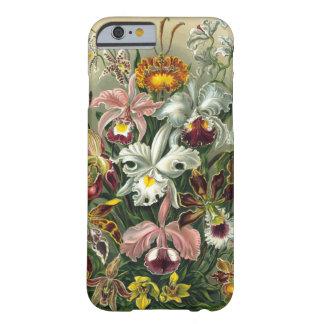 ¡Orquídeas en paraíso! Funda Barely There iPhone 6