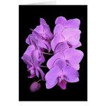 orquídeas (estilo del fresco) tarjeta de felicitación