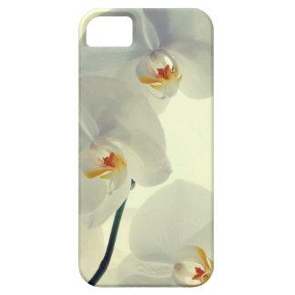 Orquídeas Funda Para iPhone SE/5/5s