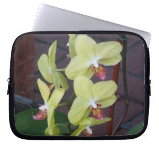 Orquídeas Fundas Computadoras