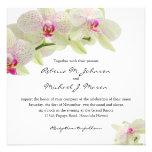 Orquídeas hermosas del blanco y de las rosas fuert comunicados personalizados
