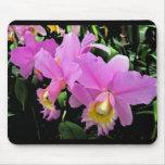 Orquídeas hermosas tapete de ratones