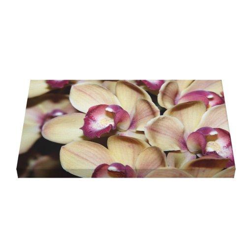 Orquídeas Impresión En Lienzo Estirada