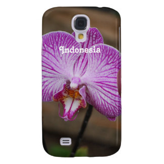 Orquídeas indonesias
